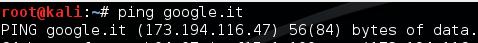 Ping IP di Google.it