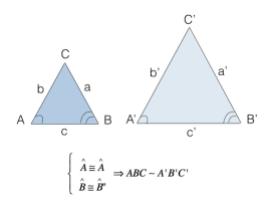 Primo criterio di similitudine dei triangoli