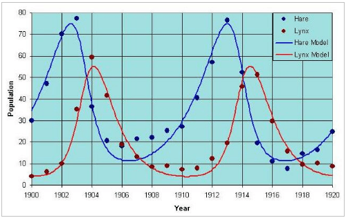 Problema Hudson Bay diagramma 1