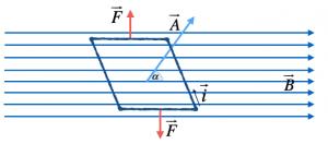 momento-magnetico