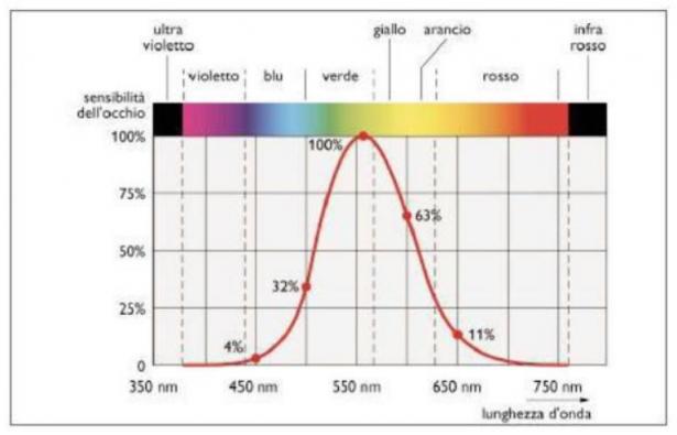 Variazione della percezione dell'occhio in funzione della lunghezza d'onda nello spettro visibile