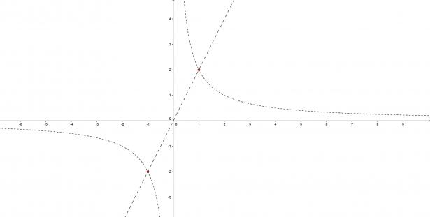 Grafico iperbole e retta y=2x